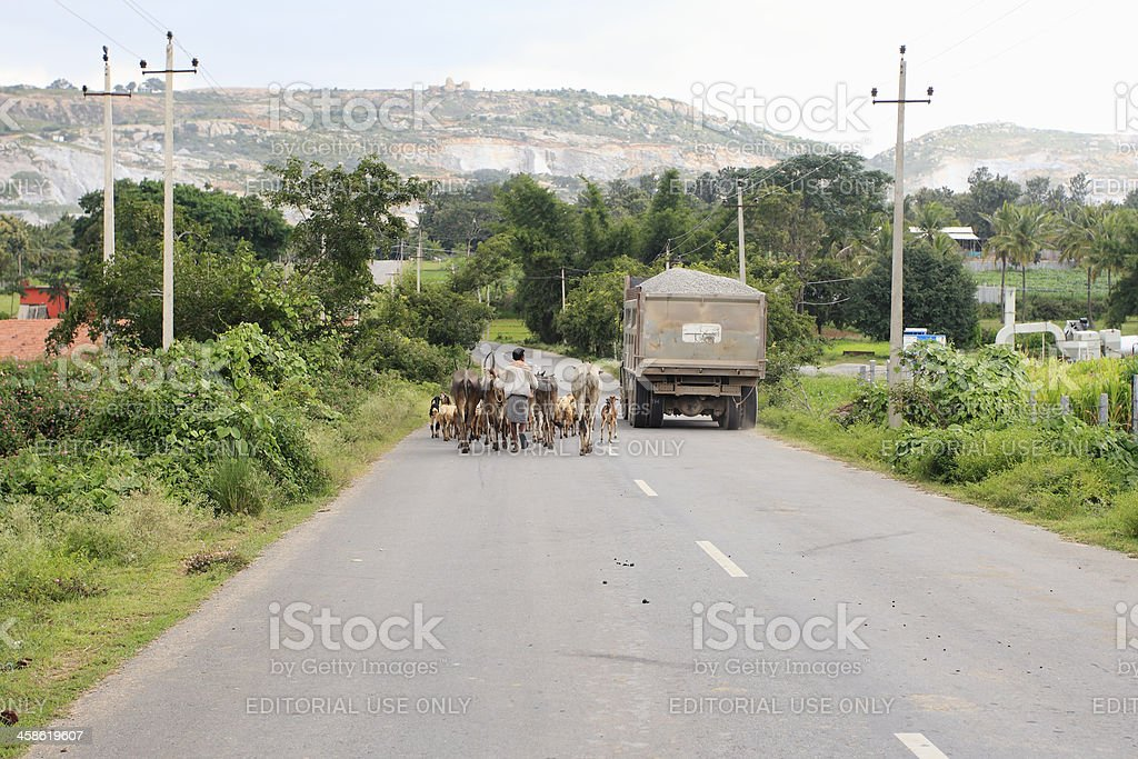Rural scene, India stock photo