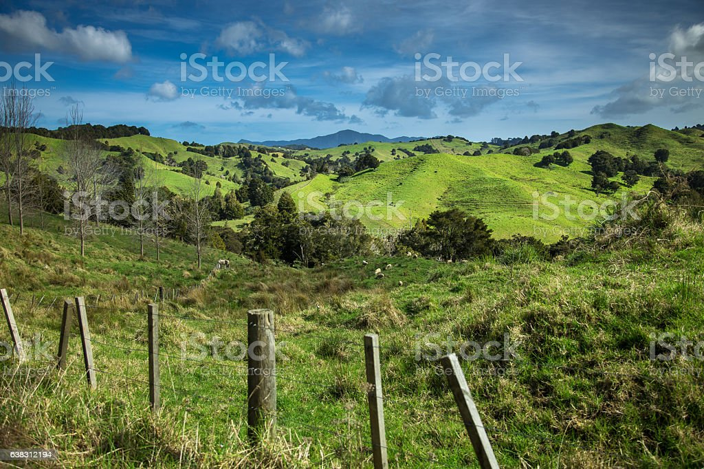 Rural Scene Near Kohukohu, New Zealand stock photo