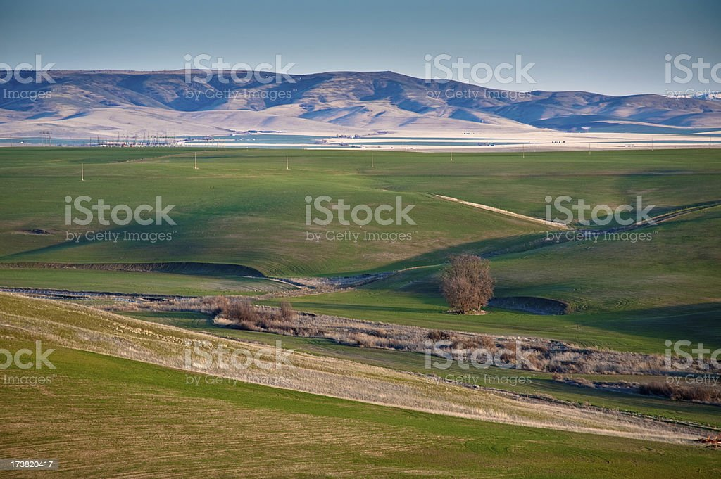 Rural Scene stock photo