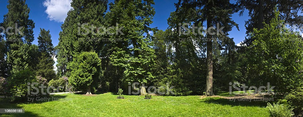 XXL Rural scenic royalty-free stock photo