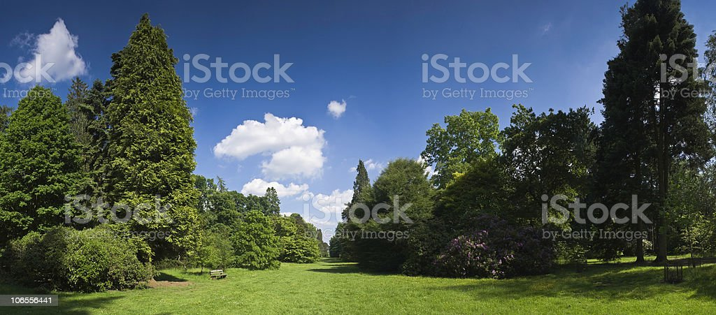 XXL Rural scenic royalty-free stock photo
