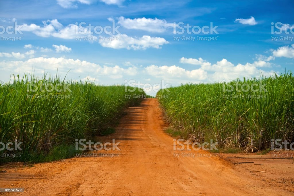 Rural scenic royalty-free stock photo