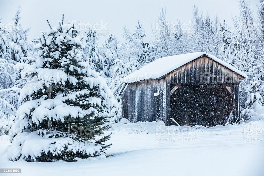 Rural Shed Garage Winter Snow Blizzard stock photo