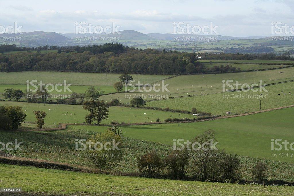 Rural Shropshire royalty-free stock photo