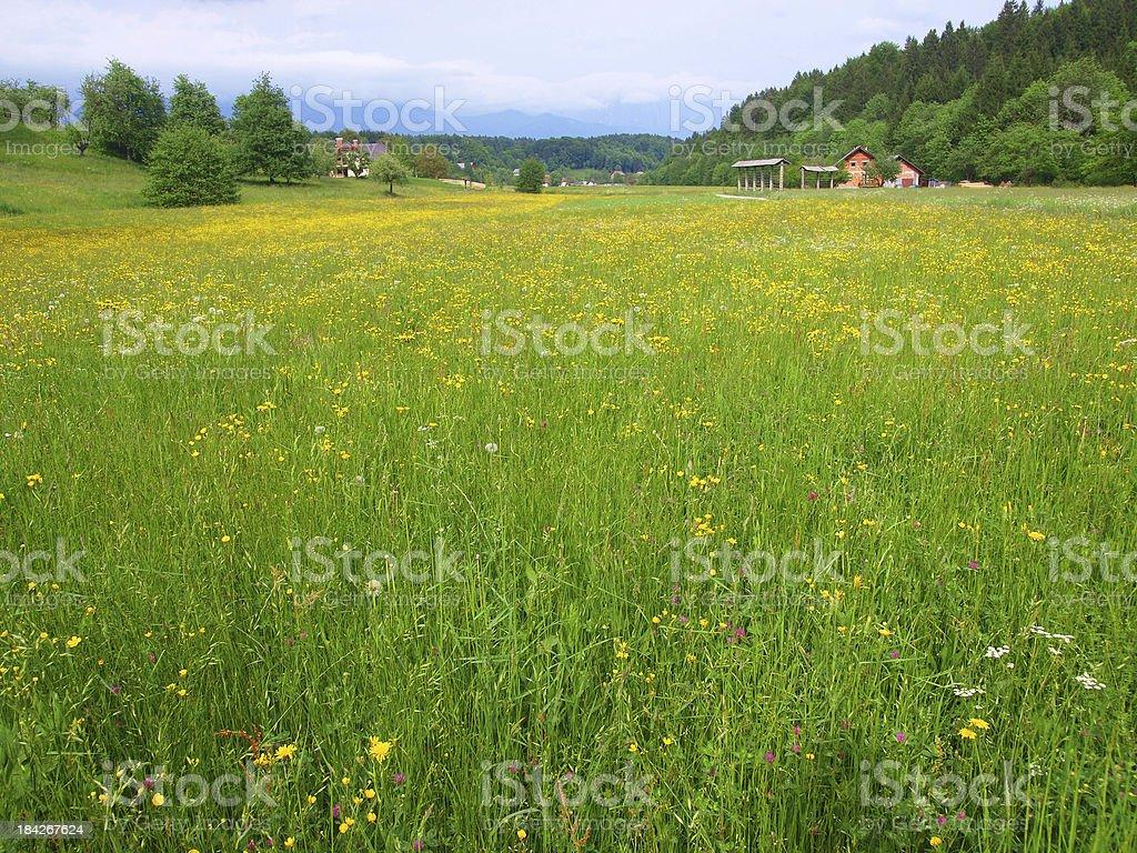 Rural Slovenia stock photo