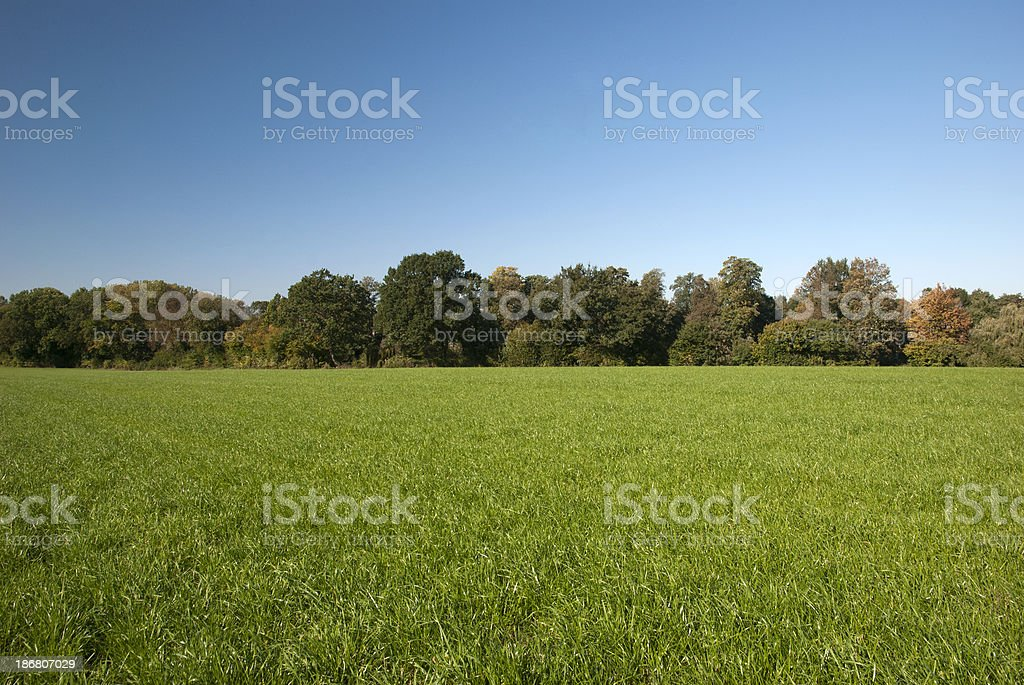 Rural spring setting stock photo