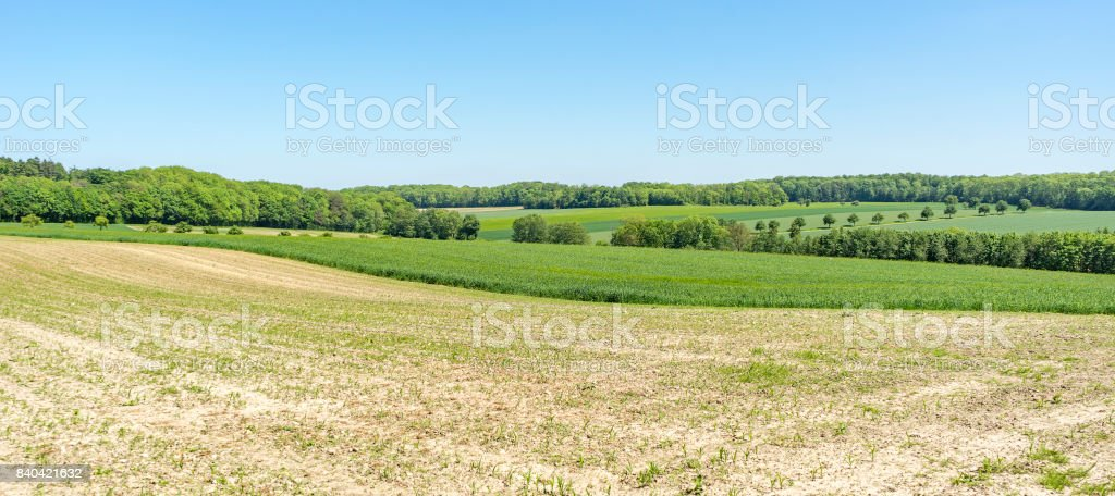 rural springtime scenery stock photo