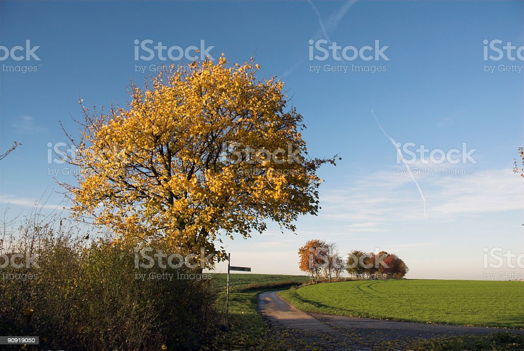 rural street royalty-free stock photo