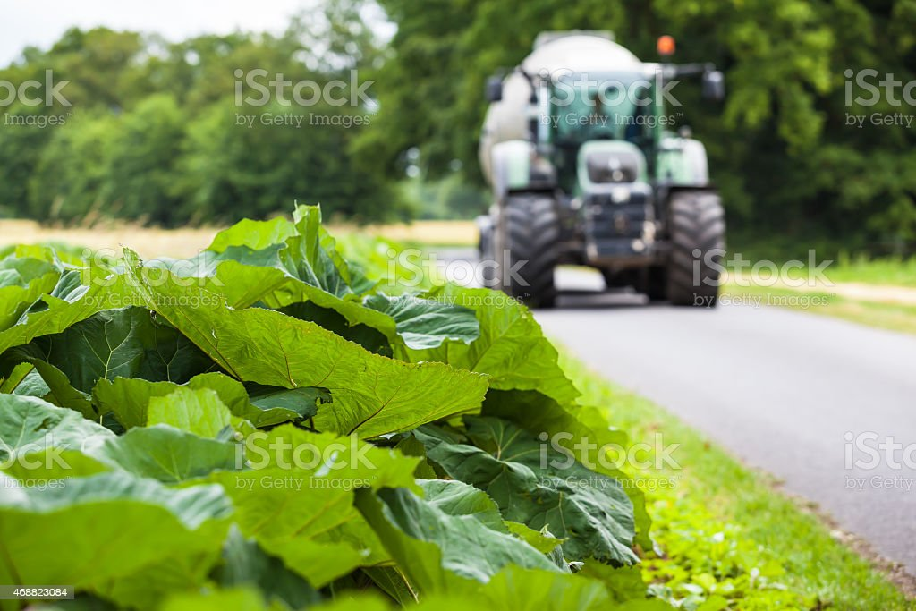 Rural Street with Tractor stock photo