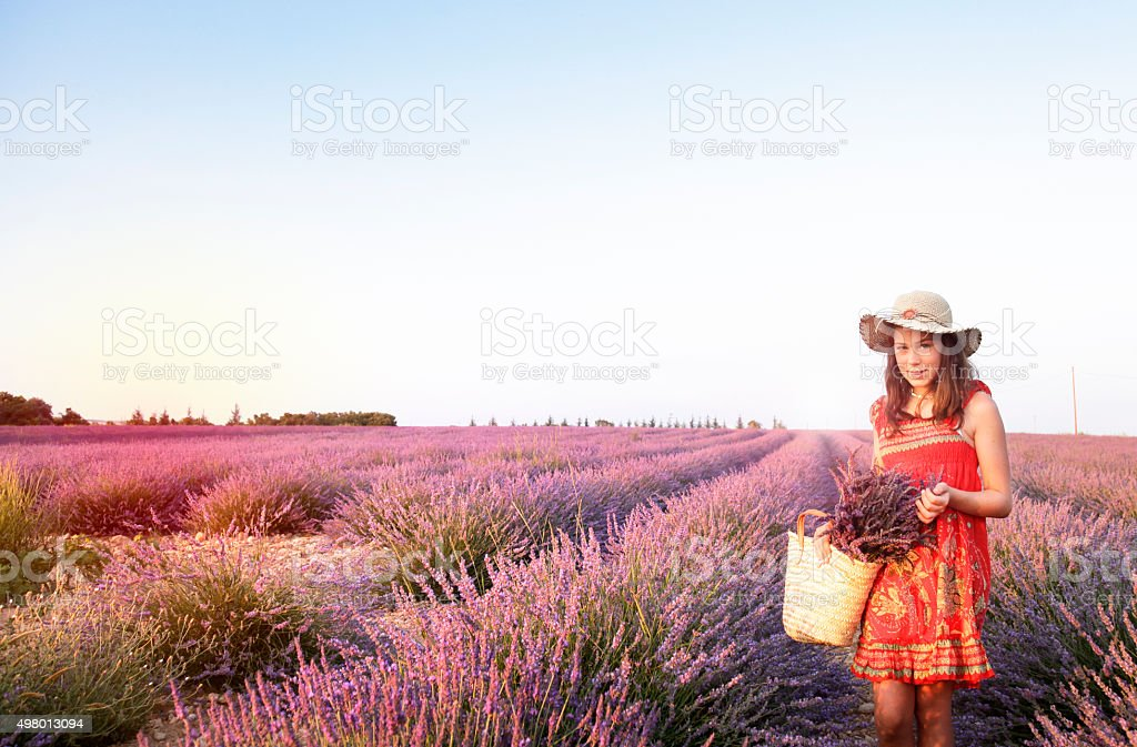Rural teen girl at provence lavender field stock photo