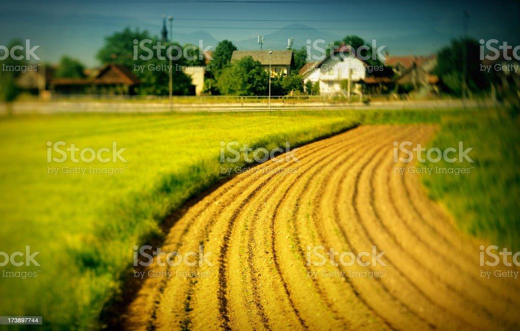 Rurals royalty-free stock photo