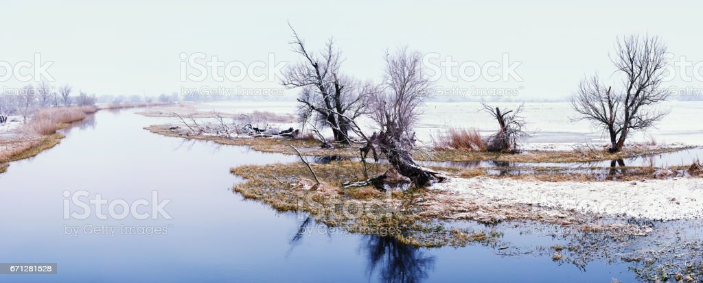rurial scene. Winter landscape on Havel River (Germany). Havelland stock photo