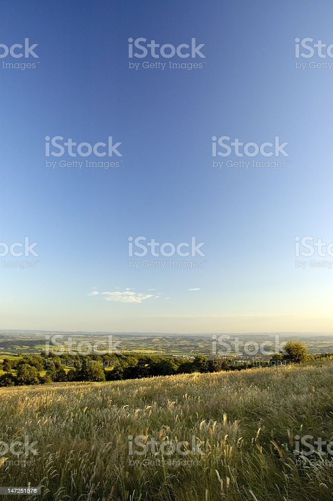 Rush of Summer stock photo