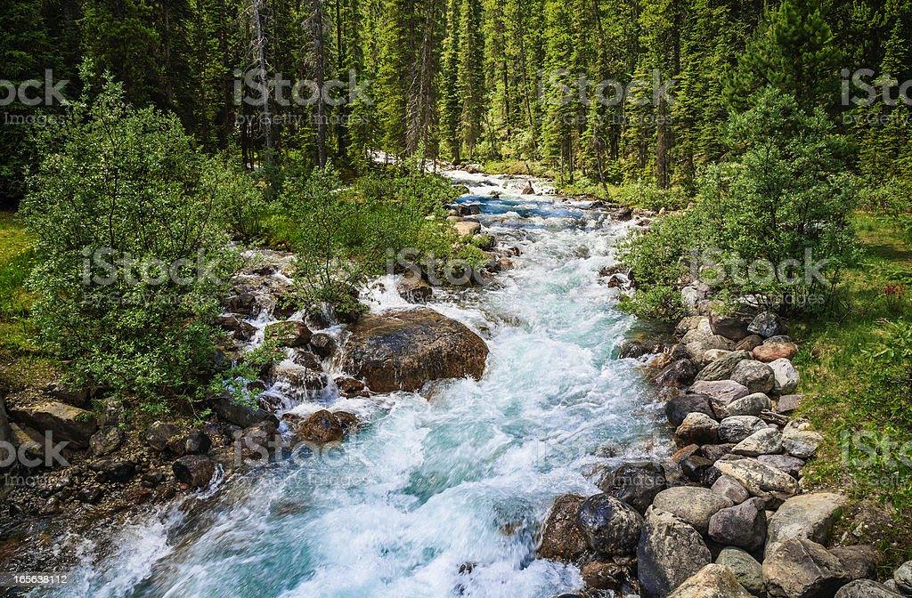 rushing mountain stream royalty-free stock photo