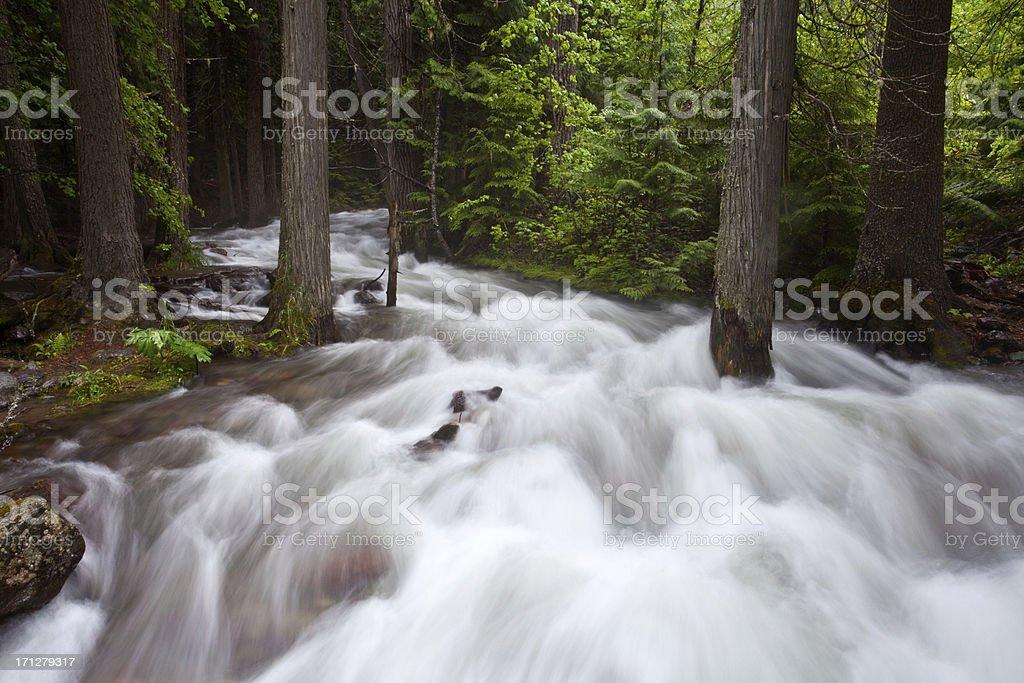 Rushing River royalty-free stock photo
