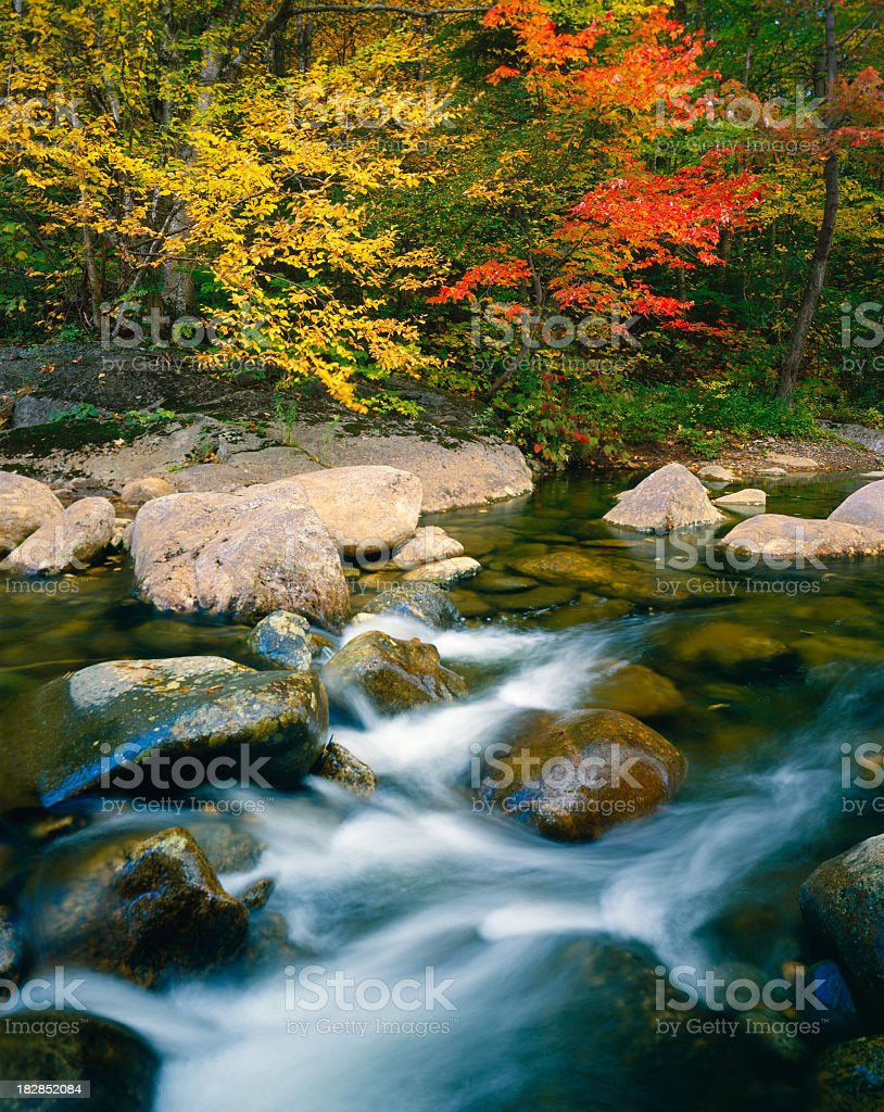 Rushing Stream And Autumn Color, Vermont royalty-free stock photo