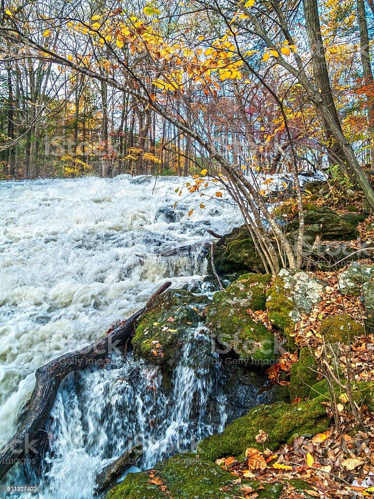 Rushing Water Fallen Leaves stock photo