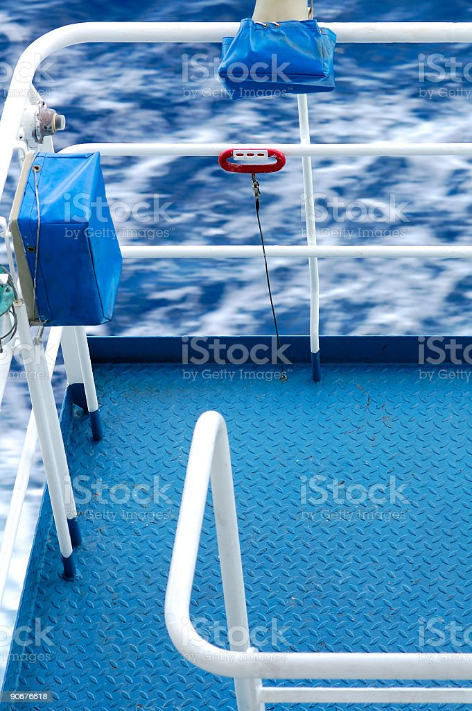 Rushing Water Rail royalty-free stock photo
