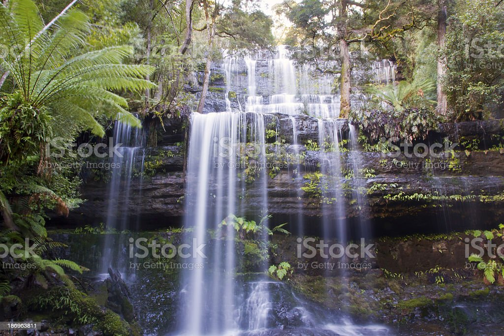 Russell Falls royalty-free stock photo