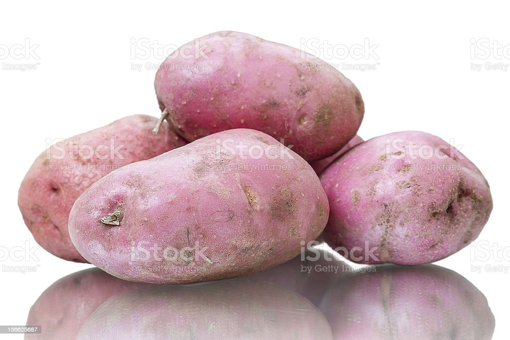 Russet potato on white royalty-free stock photo