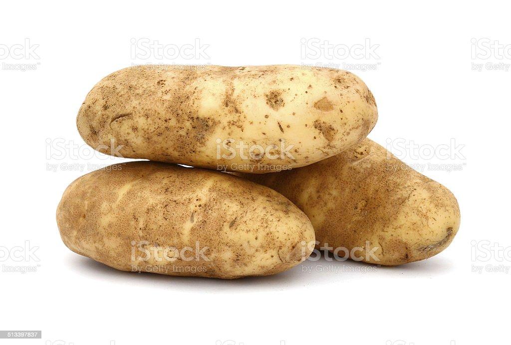 russet potato stock photo