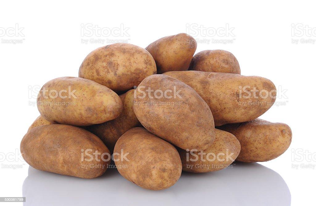 Russet Potatoes on White stock photo