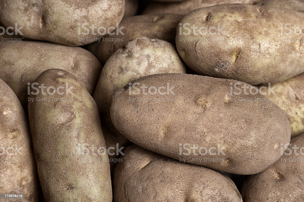 Russet Potatoes royalty-free stock photo