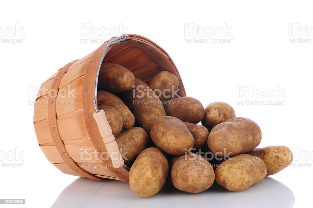 Russet Potatoes spill from Basket stock photo