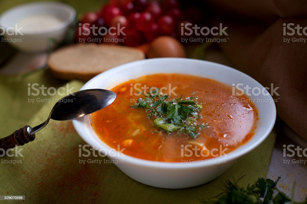 Russian cabbage soup shchi stock photo