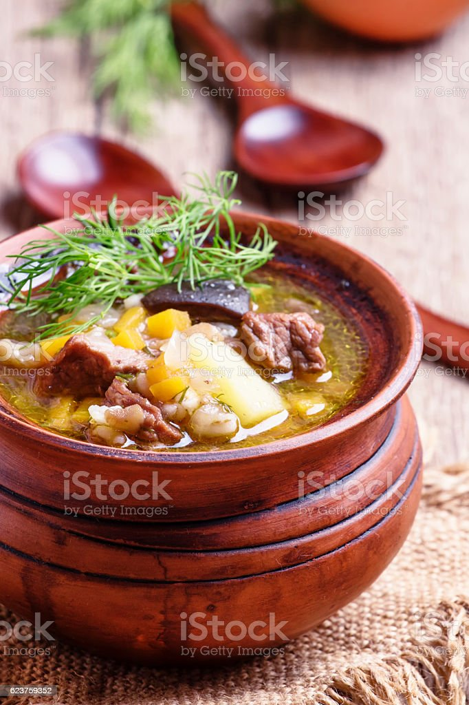 Russian cuisine: soup with beef stock photo