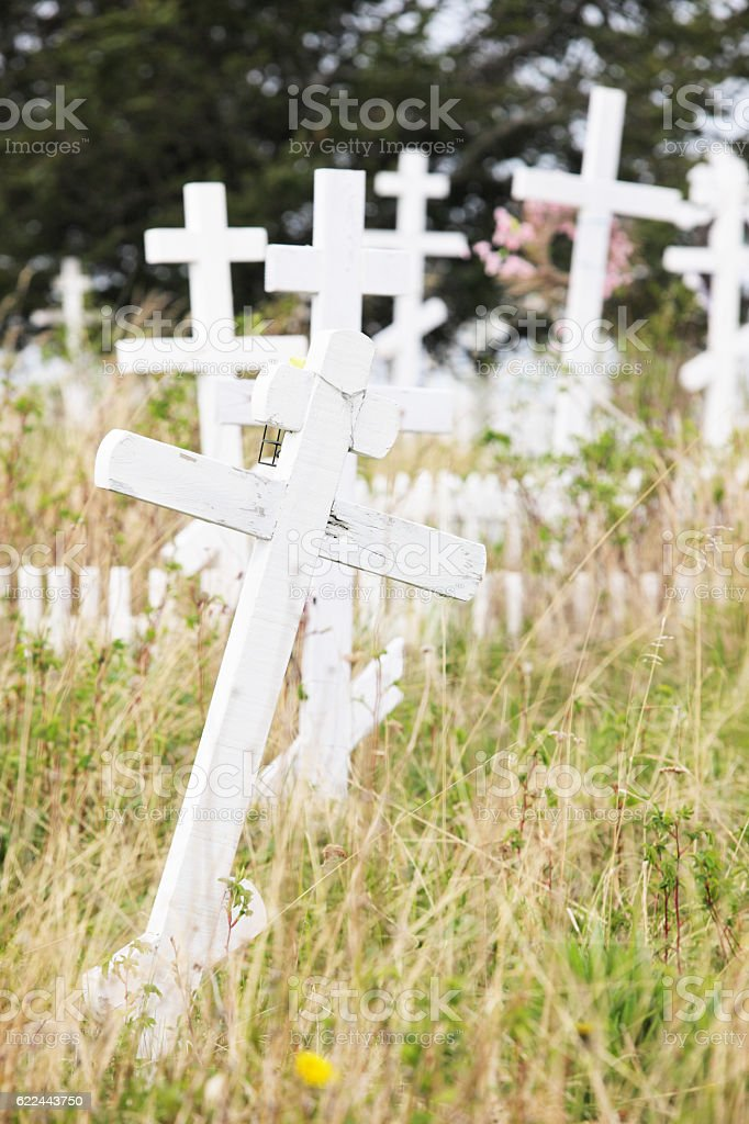 Russian Orthodox Crosses Overgrown Cemetery stock photo
