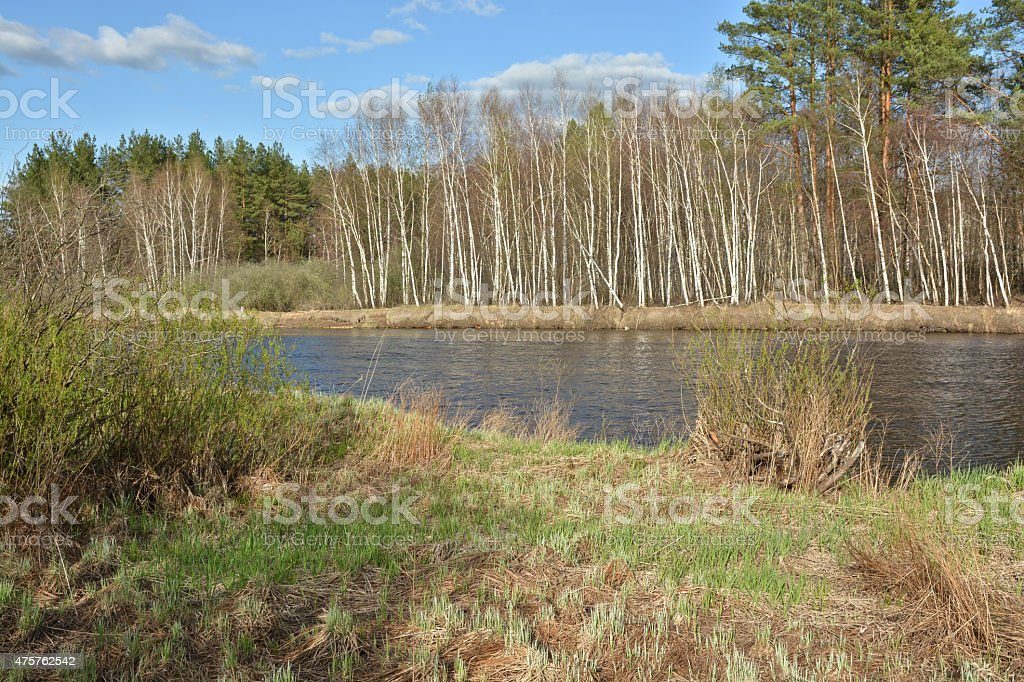 Russian spring landscape. stock photo