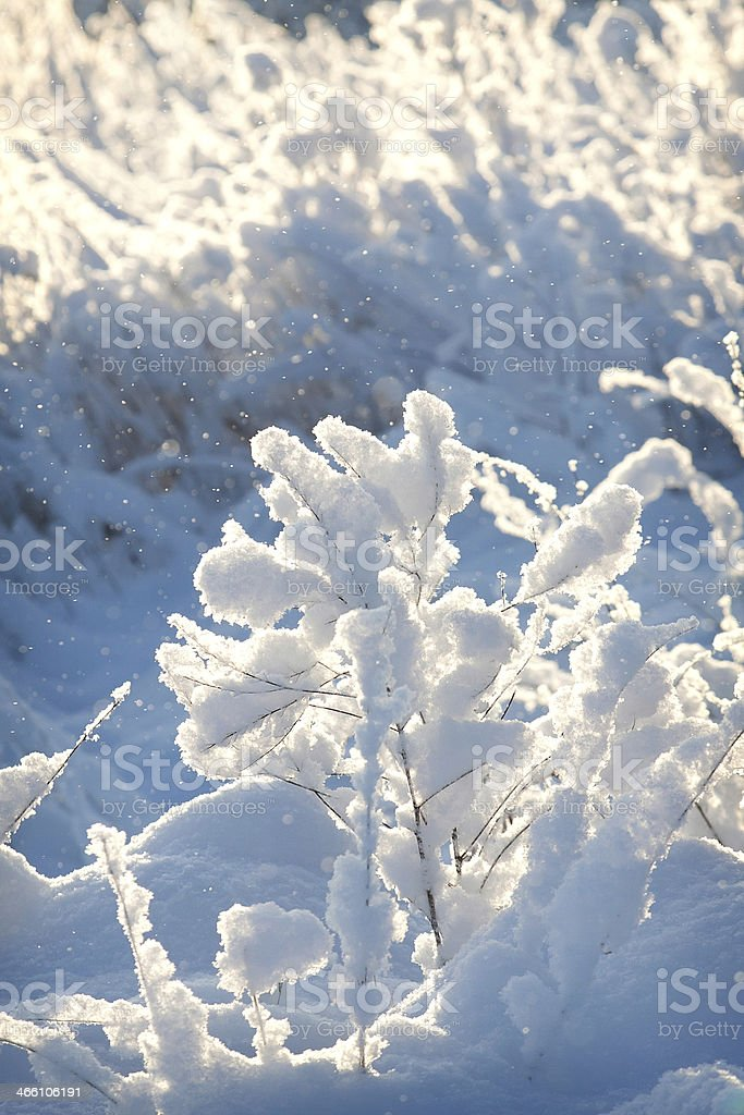Russian winter royalty-free stock photo