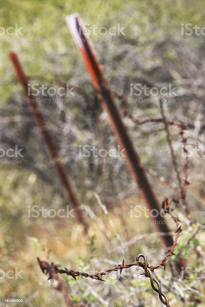 Rusted Barbed Wire Fence Posts royalty-free stock photo