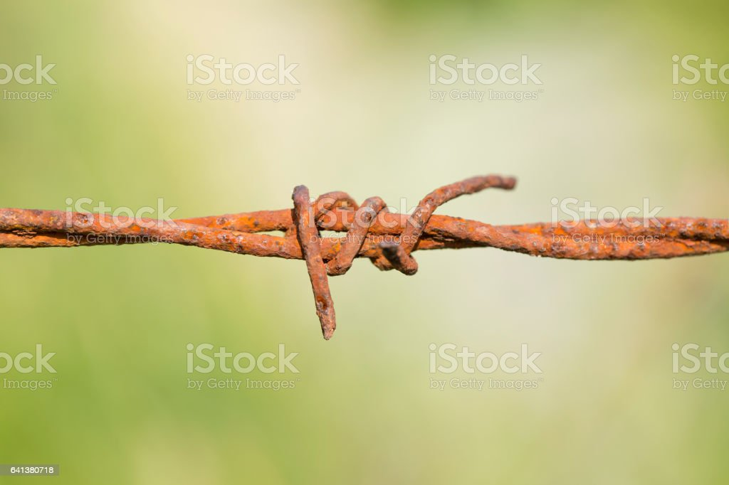 Rusted barbed wire stock photo
