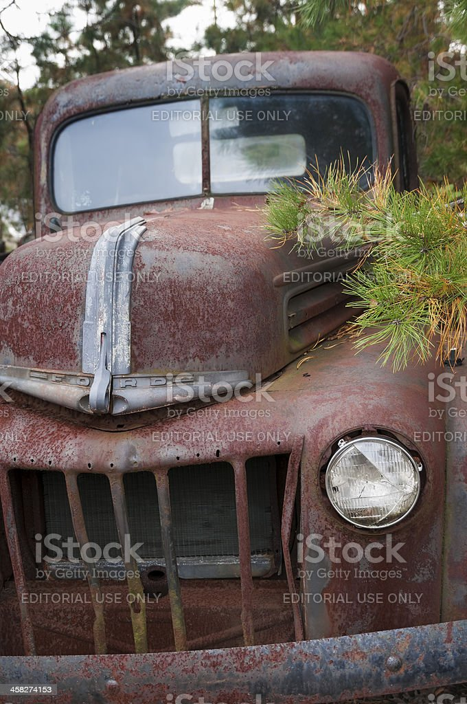 Rusted Ford Truck royalty-free stock photo