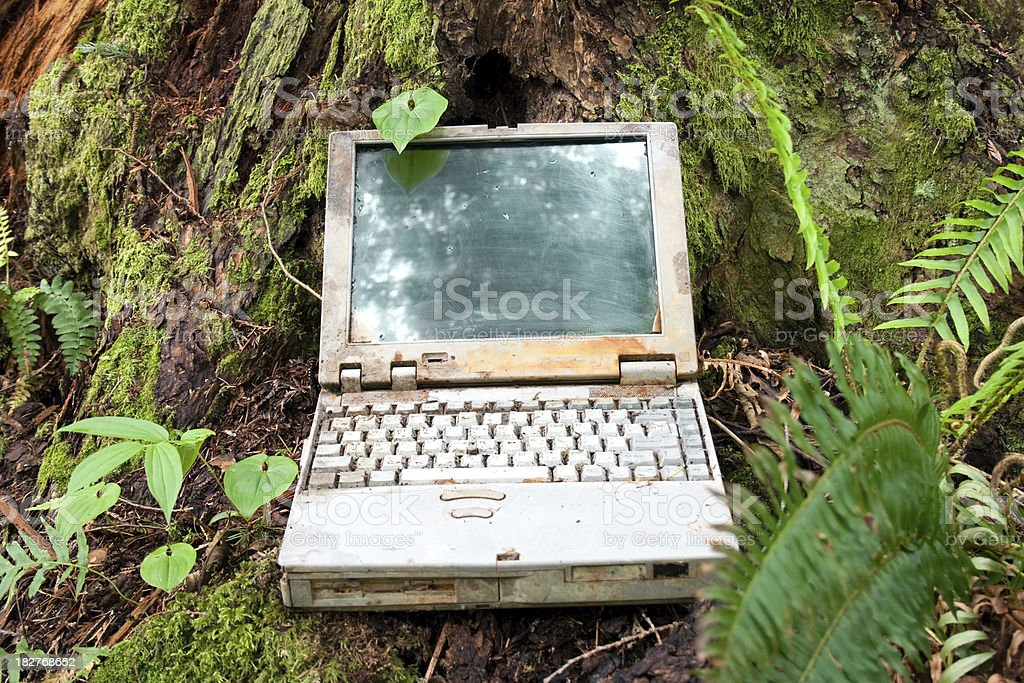 Rusted Laptop Computer Lying in Forest royalty-free stock photo