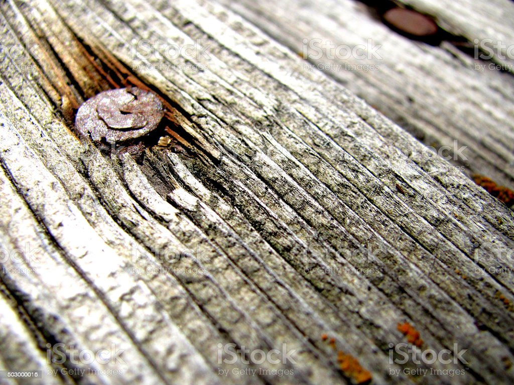 Rusted Nail stock photo