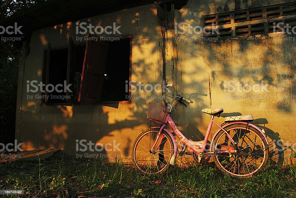 Rusted Vintage Bike royalty-free stock photo