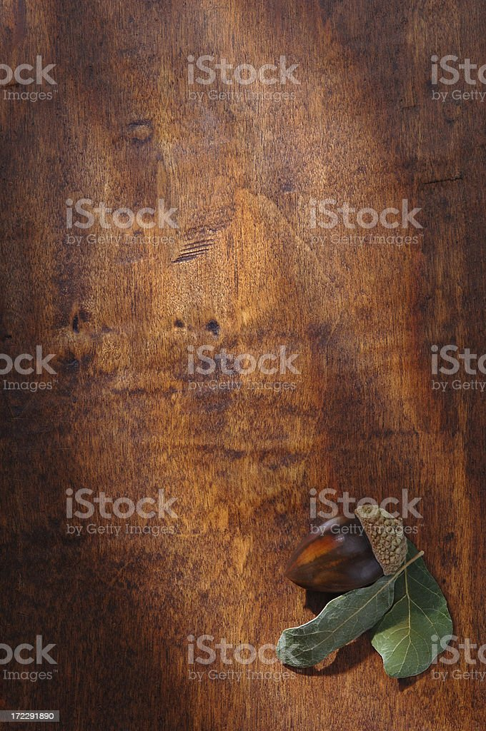 Rustic Autumn royalty-free stock photo