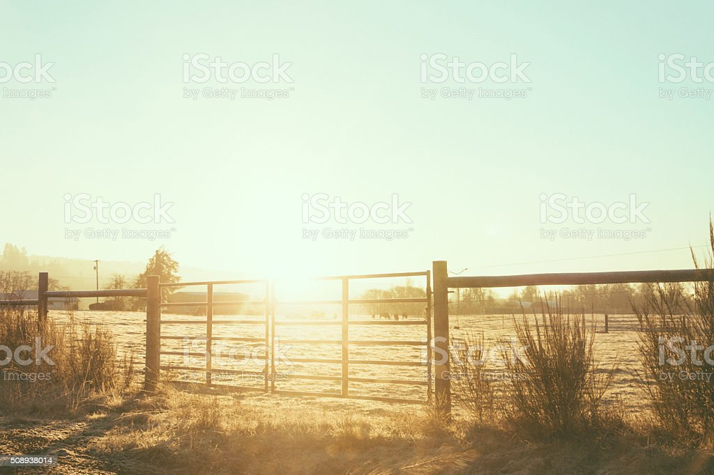 Rustic Country Fence stock photo