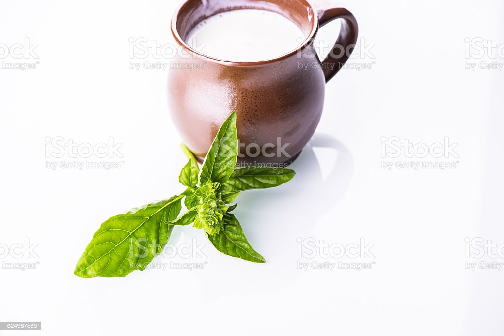 Rustic cup of milk with fresh mint leaves stock photo
