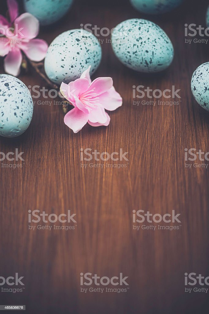 Rustic Easter background with speckled eggs and blossoms. Wood background. stock photo