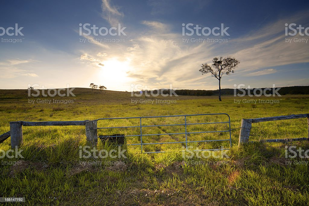Rustic Gate, Australian Farmland stock photo