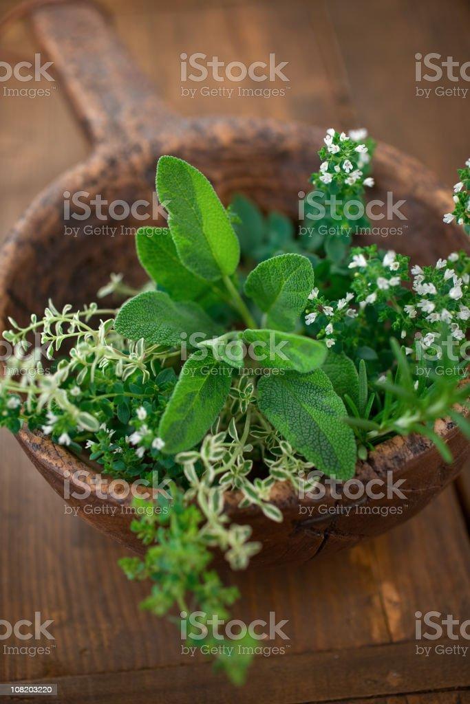 Rustic Herbs stock photo