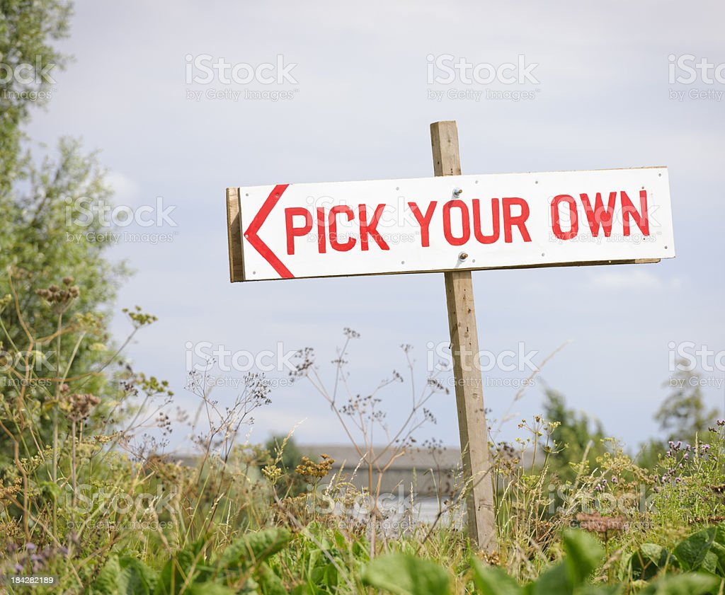 Rustic Pick Your Own Sign royalty-free stock photo