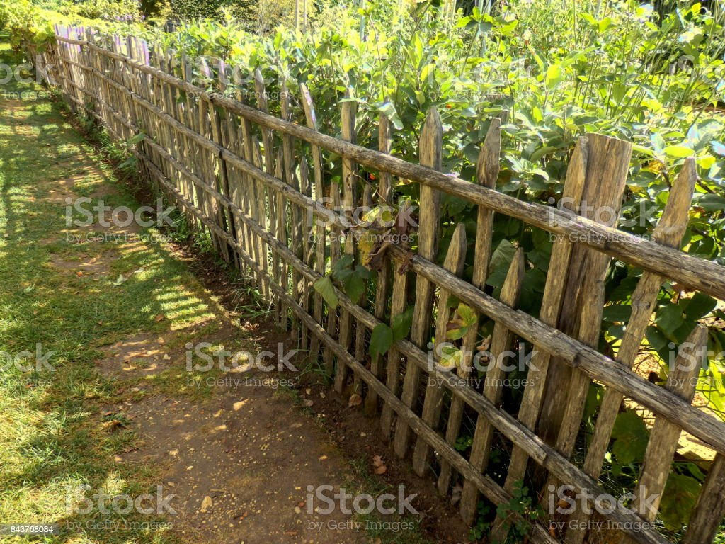 Rustic Picket Fence stock photo