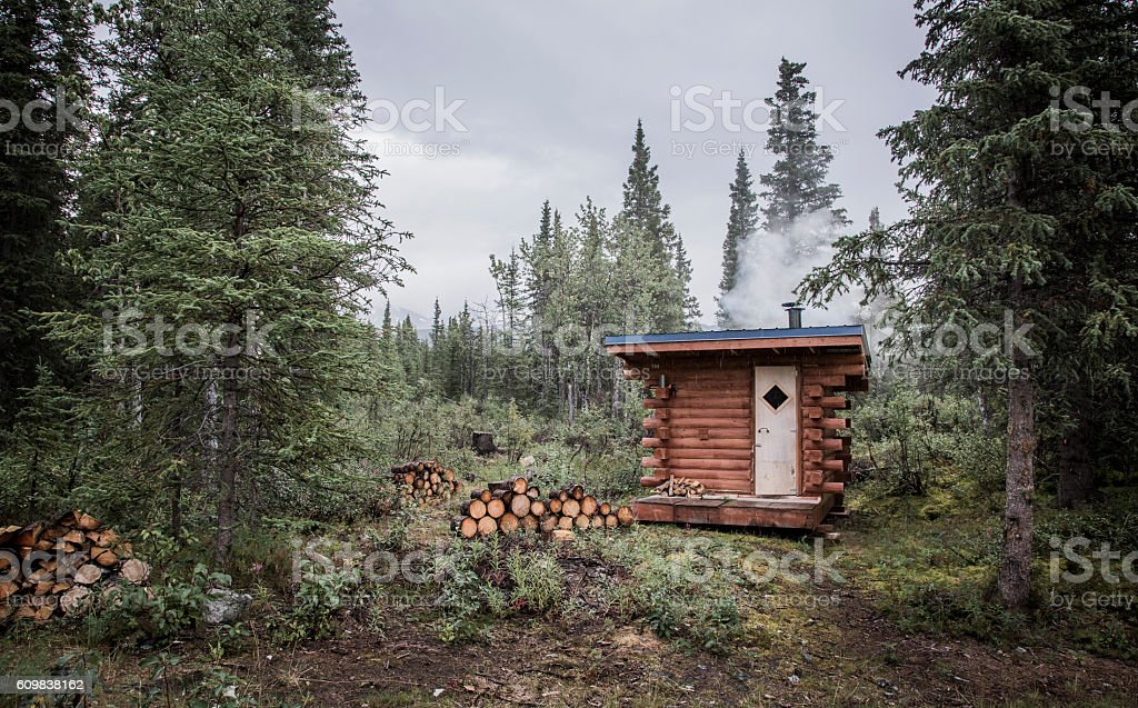 Rustic Remote Log Cabin in the Woods stock photo