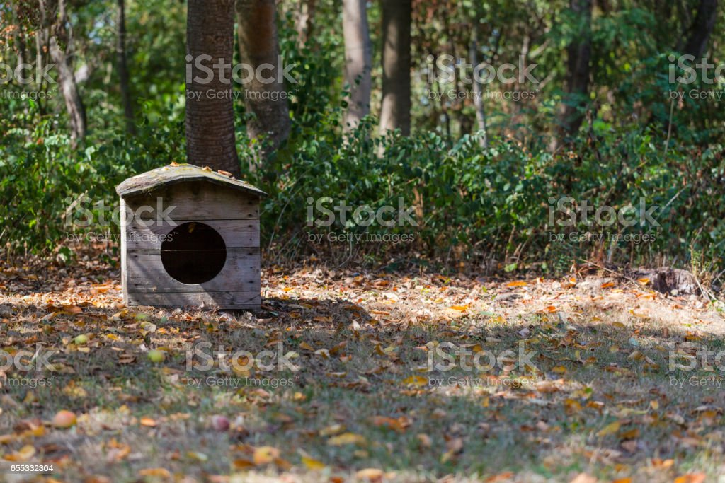 Rustic small dog house in Polish village stock photo