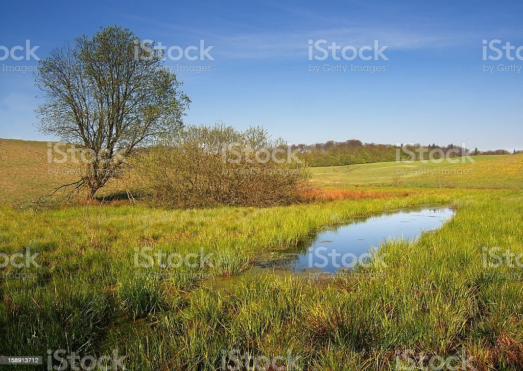 rustic, spring landscape royalty-free stock photo